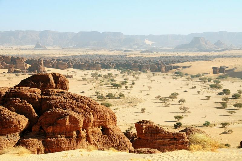Labyrinth Africa