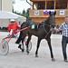 Kasaške dirke v Komendi 29.05.2016 Druga dirka