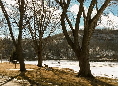 park trees nature minnesota landscape midwest parkbench winona