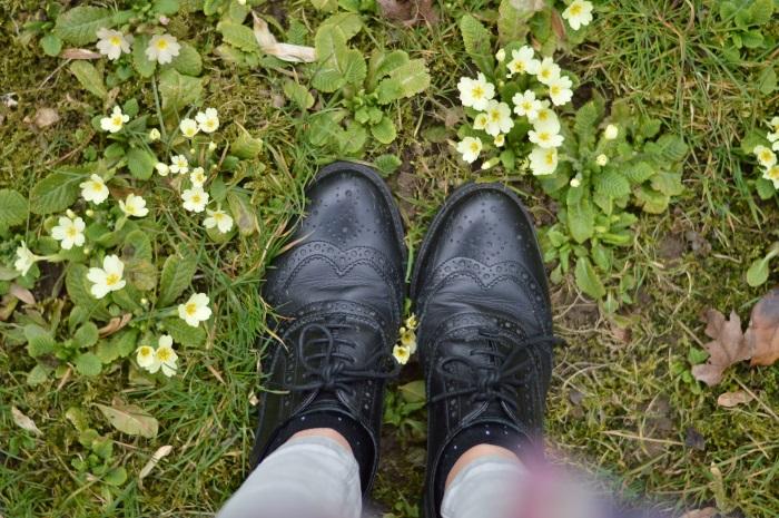 primule, fabone, primavera, wildflower girl (3)