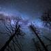 Scanning the Heavens by Wayne Pinkston