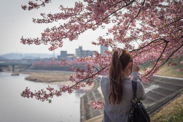 Okazaki_Sakura_05