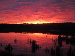 Miquelon Lake PP