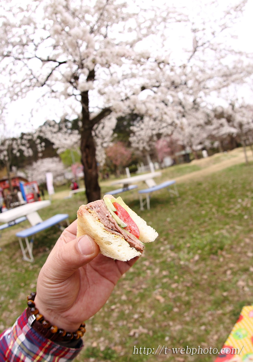 15apr11sandwichs05