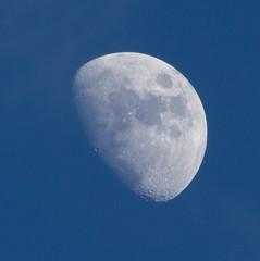 Daylight Waxing Gibbous Moon 29 Mar 2015