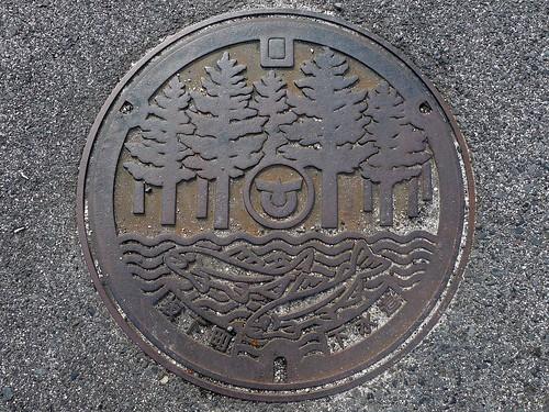 Sakashita Gifu, manhole cover (岐阜県坂下町のマンホール)