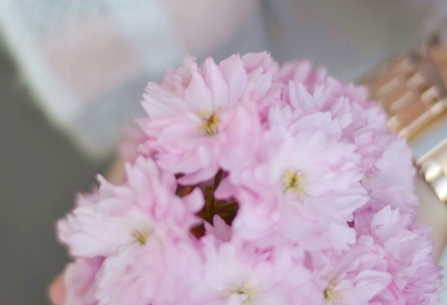 Eugli Outfit Fashionblogger OOTD LOTD Frühlingsoutfit Kirschblüten Reserved Mango (8)