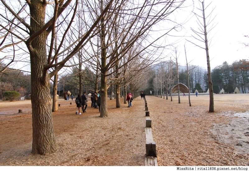 韓國 旅遊 韓國好玩 韓國 南怡島 韓劇景點 冬季戀歌場景 南怡島19