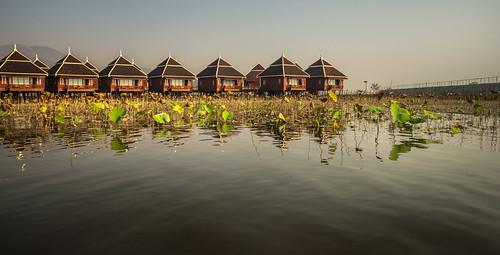 sunrise lagoon inlelake myanmarburma