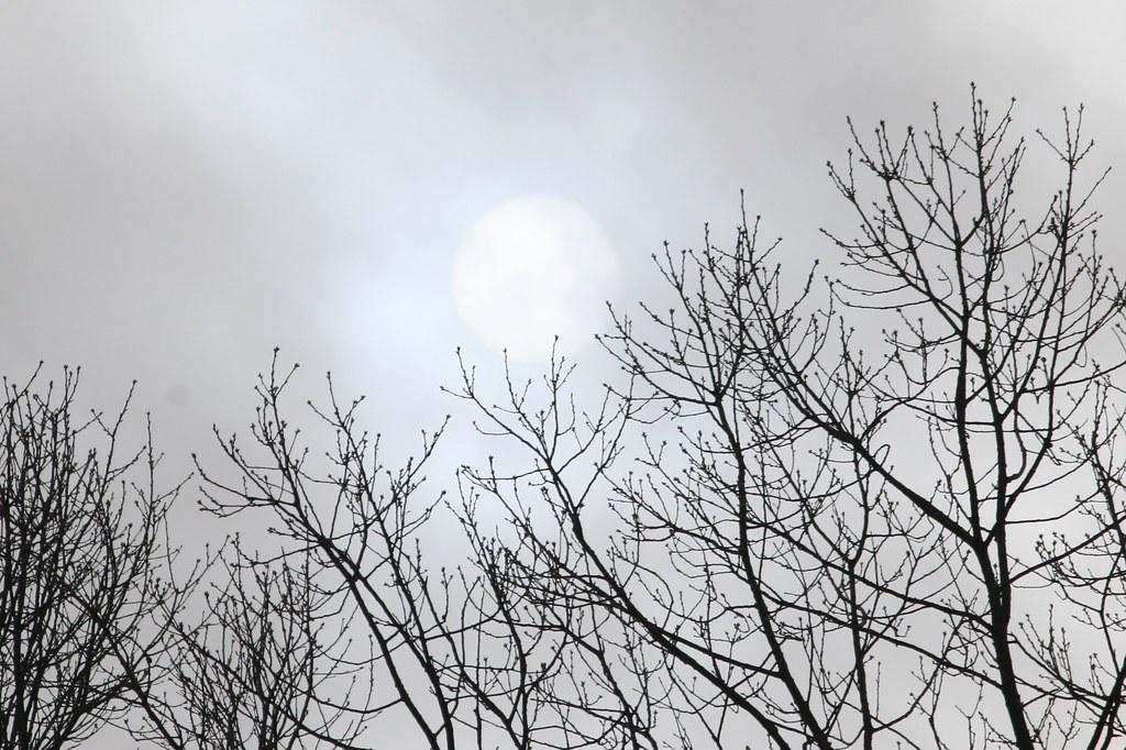 Occluded Sun