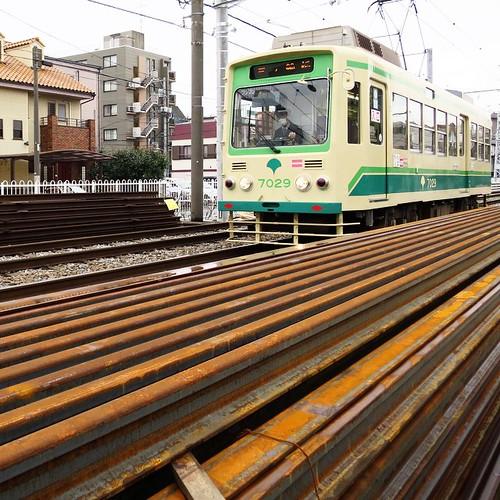 線路脇に平積みのレール。 #都電pw2015