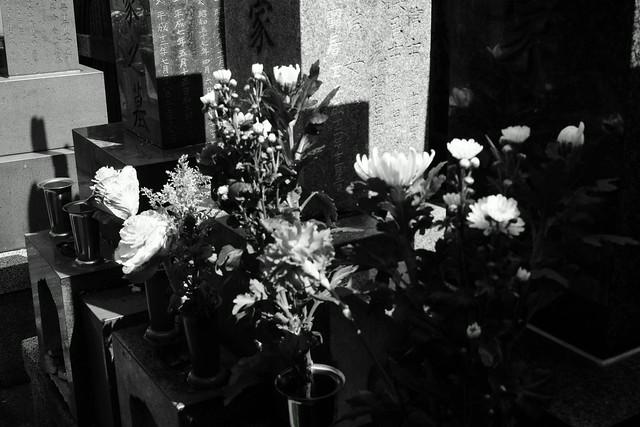 三ノ輪浄閑寺 - Jokan-ji temple, Minowa Tokyo, 17 Mar 2015. 027