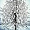 Winter aint over yet. #lika