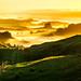 New Zealand Foggy Golden Sunrise by Daniel Peckham