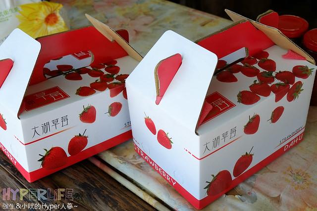 劉正男高冷草莓園  (22)