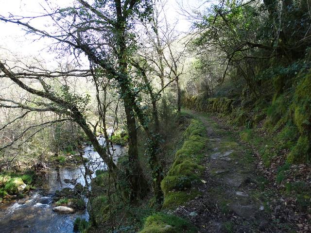 Sendero en la ruta Tras os Pasos do río Barbeira - Ruta da Liberdade