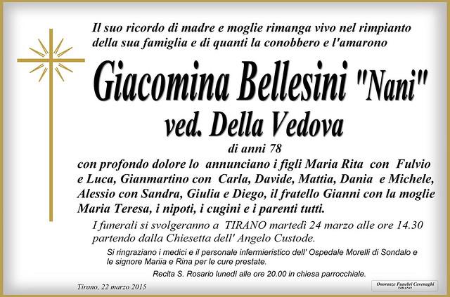 Bellesini Giacomina