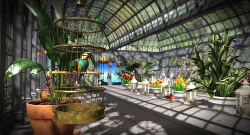 Where's Dim Sum? #299 - Caged bird in the greenhouse