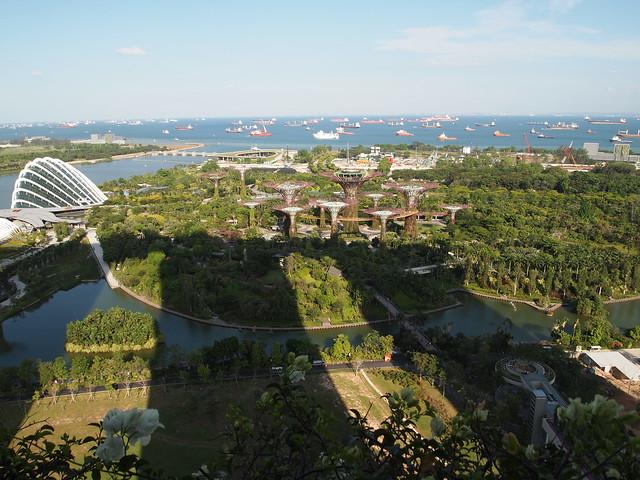 P4179030 Marina Bay Sands Hotel(マリーナ・ベイ・サンズ・ホテル)
