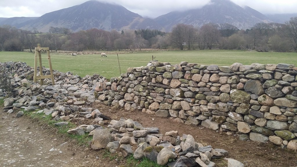 Dry stone walling in progress #sh