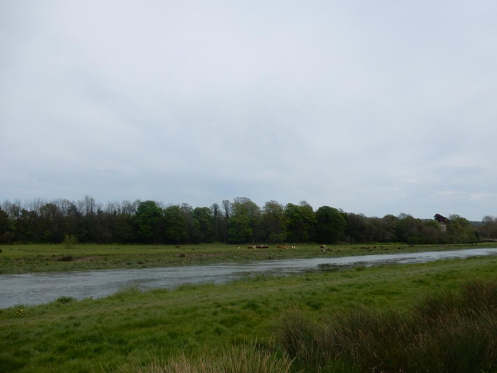 Ouse Hassocks to Lewes