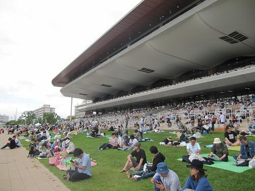 函館競馬場の芝生席ターフシート