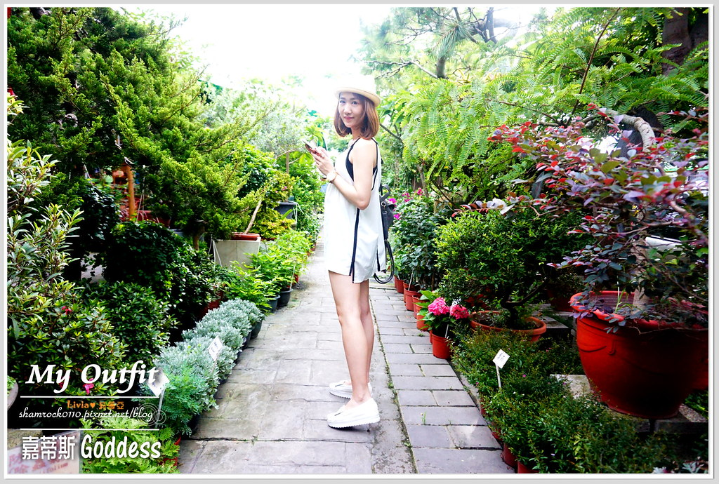 嘉蒂斯Goddess - 19