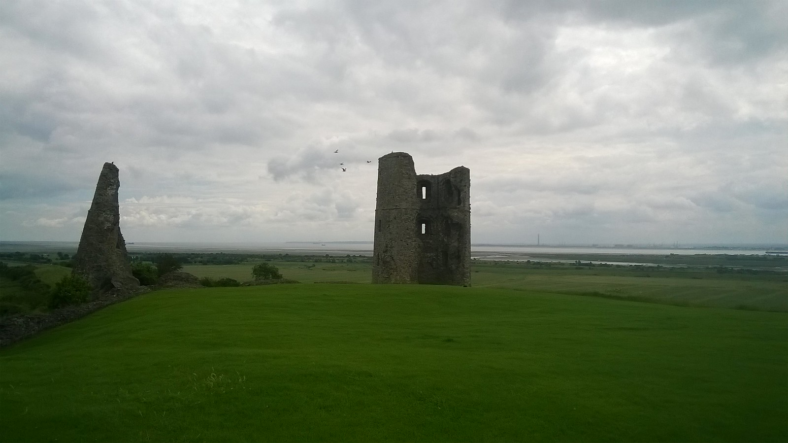 Hadleigh Castle with birds