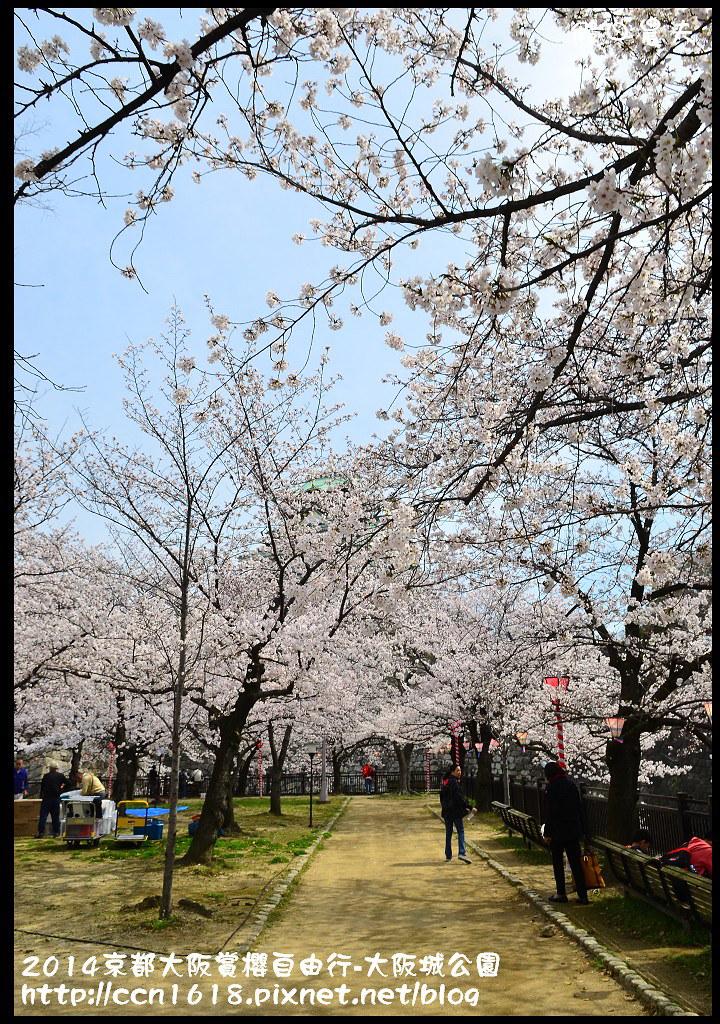 2014京都大阪賞櫻自由行-大阪城公園DSC_1854