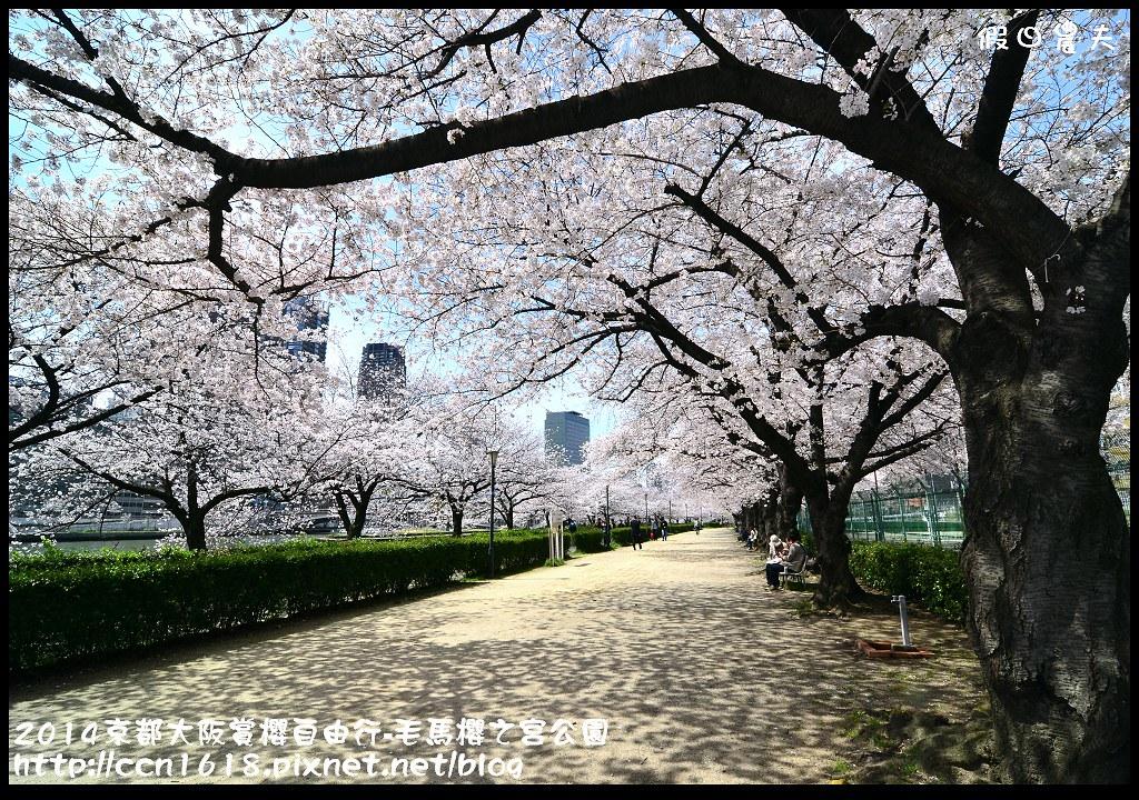 2014京都大阪賞櫻自由行-毛馬櫻之宮公園DSC_2069