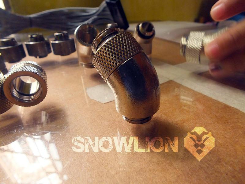 snowlion20