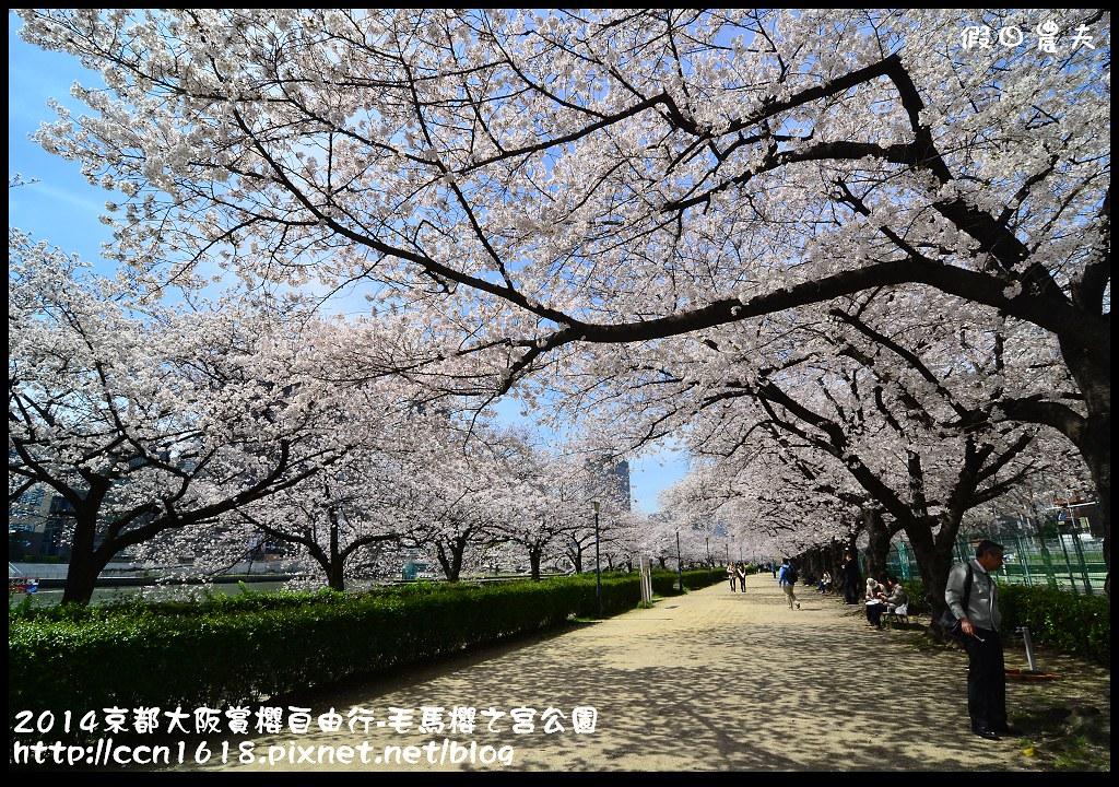 2014京都大阪賞櫻自由行-毛馬櫻之宮公園DSC_2063