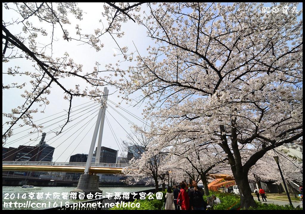 2014京都大阪賞櫻自由行-毛馬櫻之宮公園DSC_1947