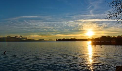 eau soir léman contrejour morges rivières embouchure