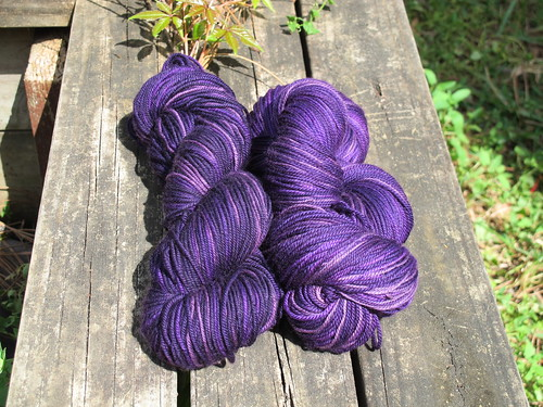 March 2015 Yarn Club: Your Joy Will Turn to Ashes in Your Mouth