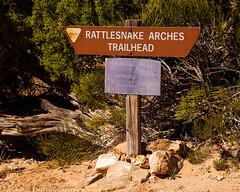Rattlesnake Arches (4-12-15)