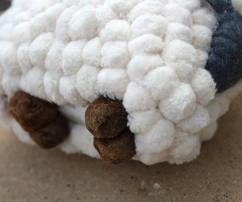 sheep feet