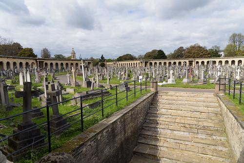 Brompton Cemetery. London. England