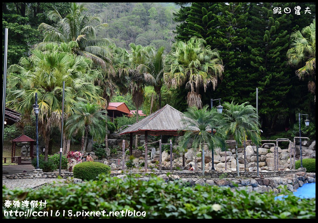 泰雅渡假村DSC_5819