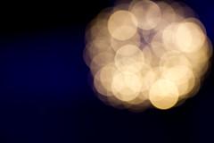 Zoo Lights 2014-1