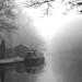 Misty & Murky by Chris Beesley
