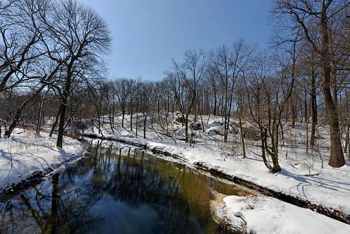 newyorkcity urbanforest newyorkbotanicalgarden snowscenes nycparks bronxriver nybgforest