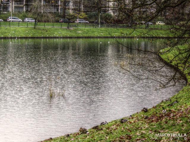 Frozen Lake - #Stadspark | #Antwerp