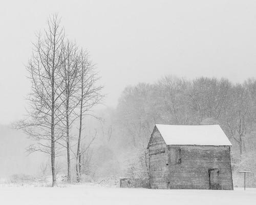 trees roof winter bw snow barn landscape nj highkey snowing