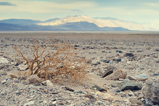 Death Valley Nationalpark, CA | Roland Krinner