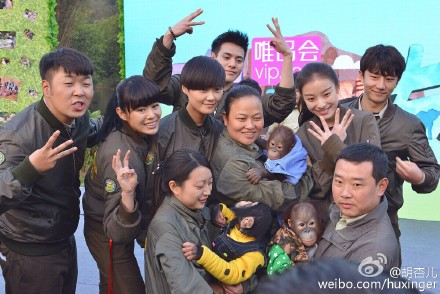 動保團體批評控制幼小黑猩猩是剝奪動物的家庭。圖片擷取自:明杏兒