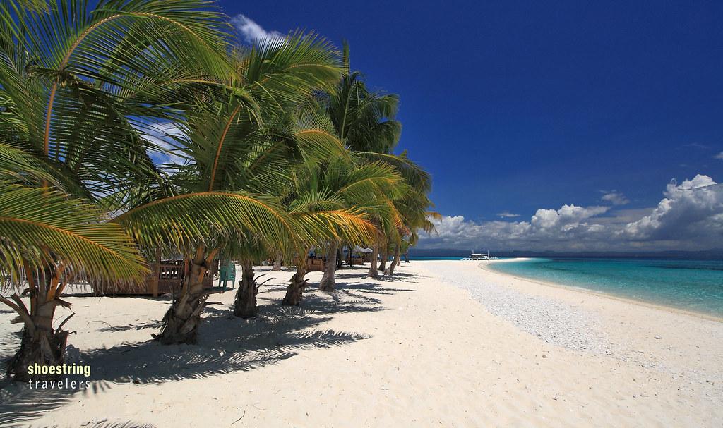 coconut palms at Kalanggaman