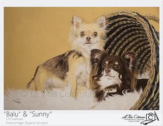 Drawing Sunny&Balu