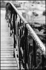 Sur le pont....