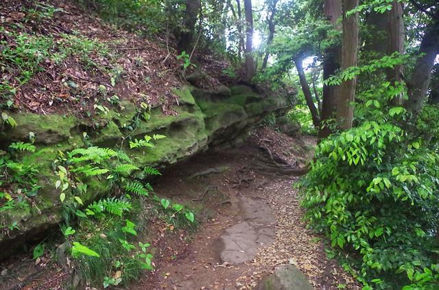 toomilog-tengoku_Hiking_trail016